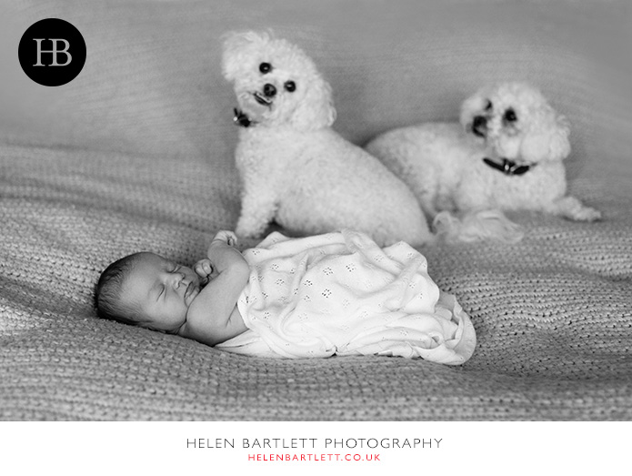 blogImagefamily-toddler-and-newborn-photographer-surrey-27