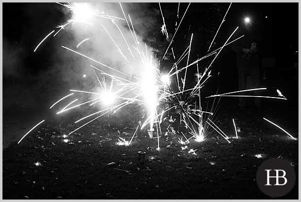 family photography with fireworks in holland park w11
