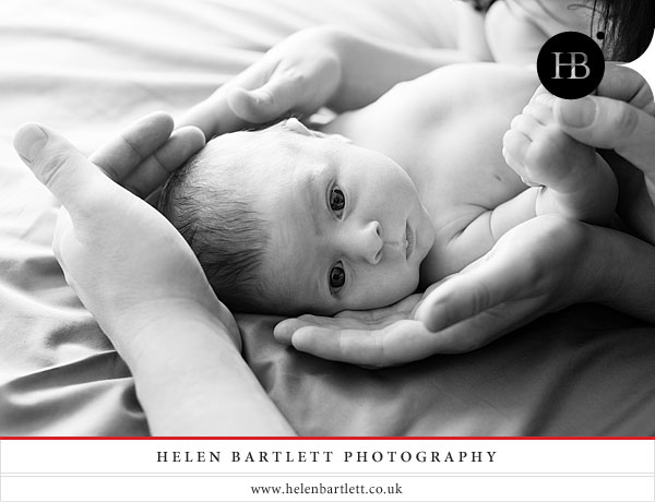 crouch end newborn and family photography n8