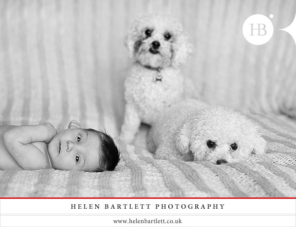 blogImagebaby-and-family-photography-surrey-1