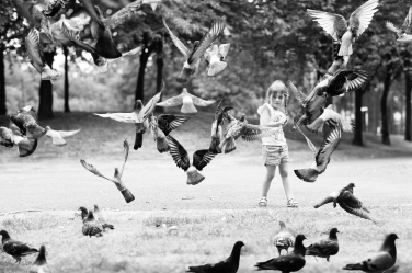 A little girl is surprised by a block of pigeons flying into the air.