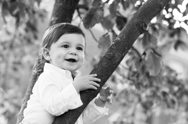 A baby boy nestles in a tree for this natural outdoor portrait in black and white.