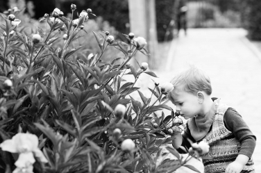 A boy smells flowers during a family portrait shoot.