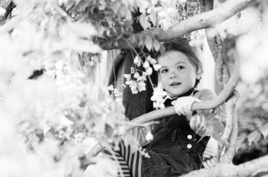 A girl in striped tights sits up in a tree.