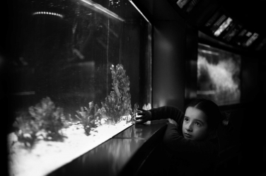 Sealife captures the imagination of this girl on her visit to an aquarium.