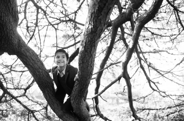 This boy climbs a tree to be higher than his family during their portrait shoot.