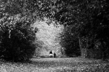 A tiny brother and sister surrounded by greenery in one of London's green spaces. The portrait