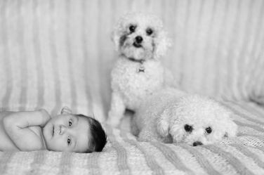 A newborn baby lies alongside two much-loved pets.
