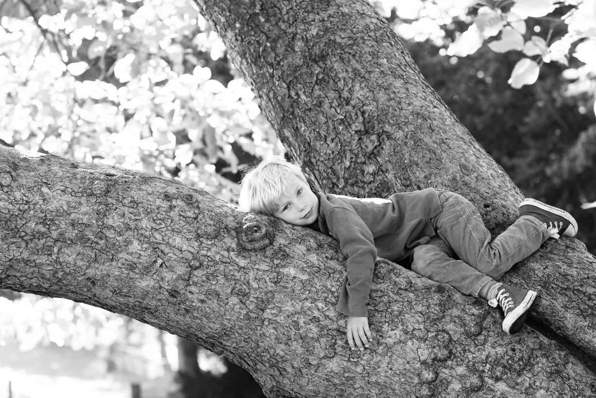 A child climbs a tree during a documentary style portrait shoot in Chiswick.