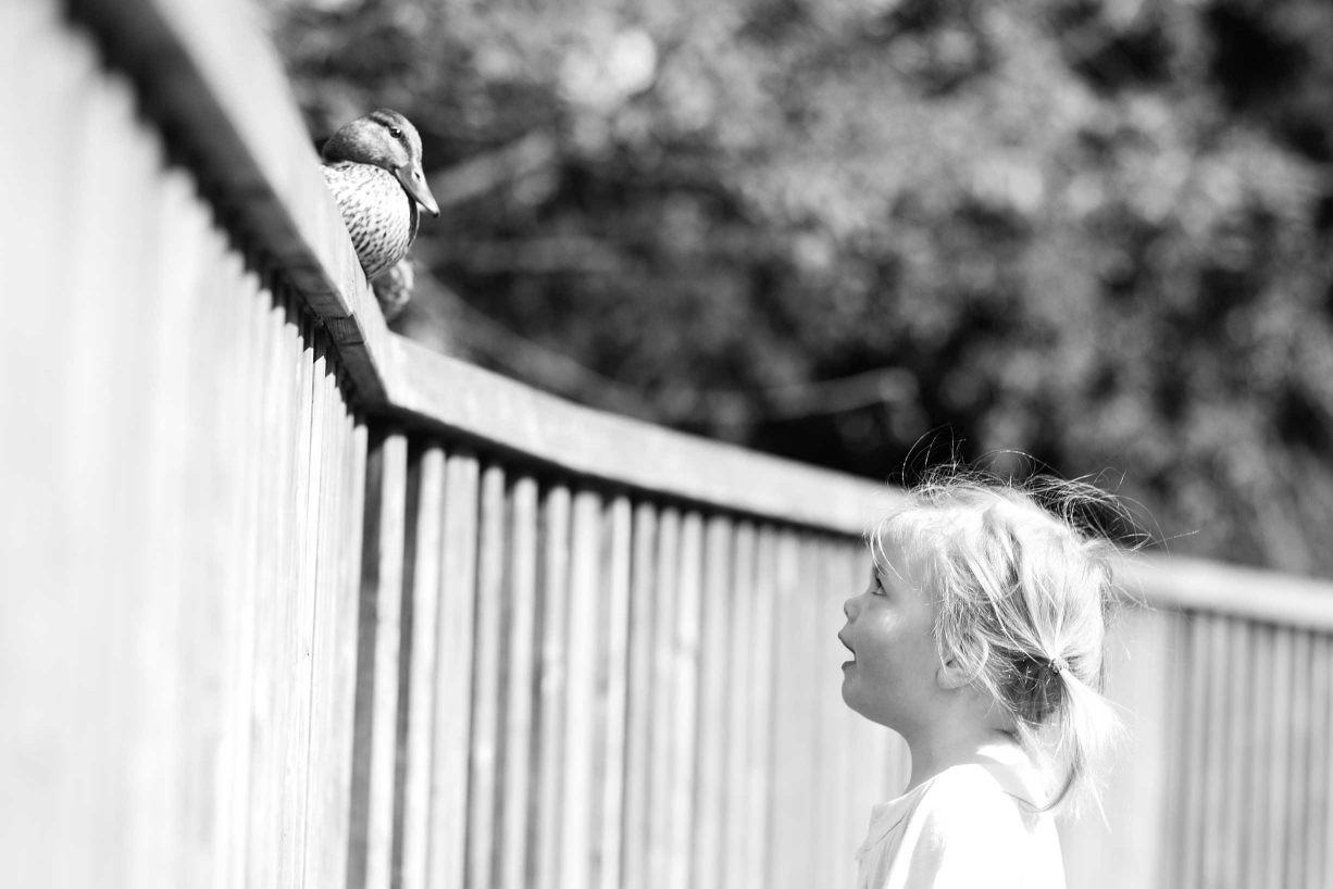 Dulwich family photographer Helen Bartlett captures a girl and her duck in this black and white portrait.