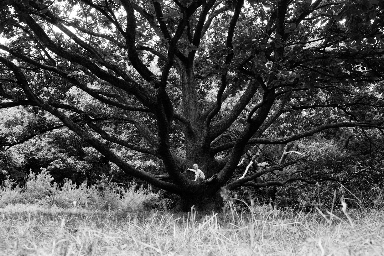 A tree provides a natural backdrop during a family portrait session on Hampstead Heath.