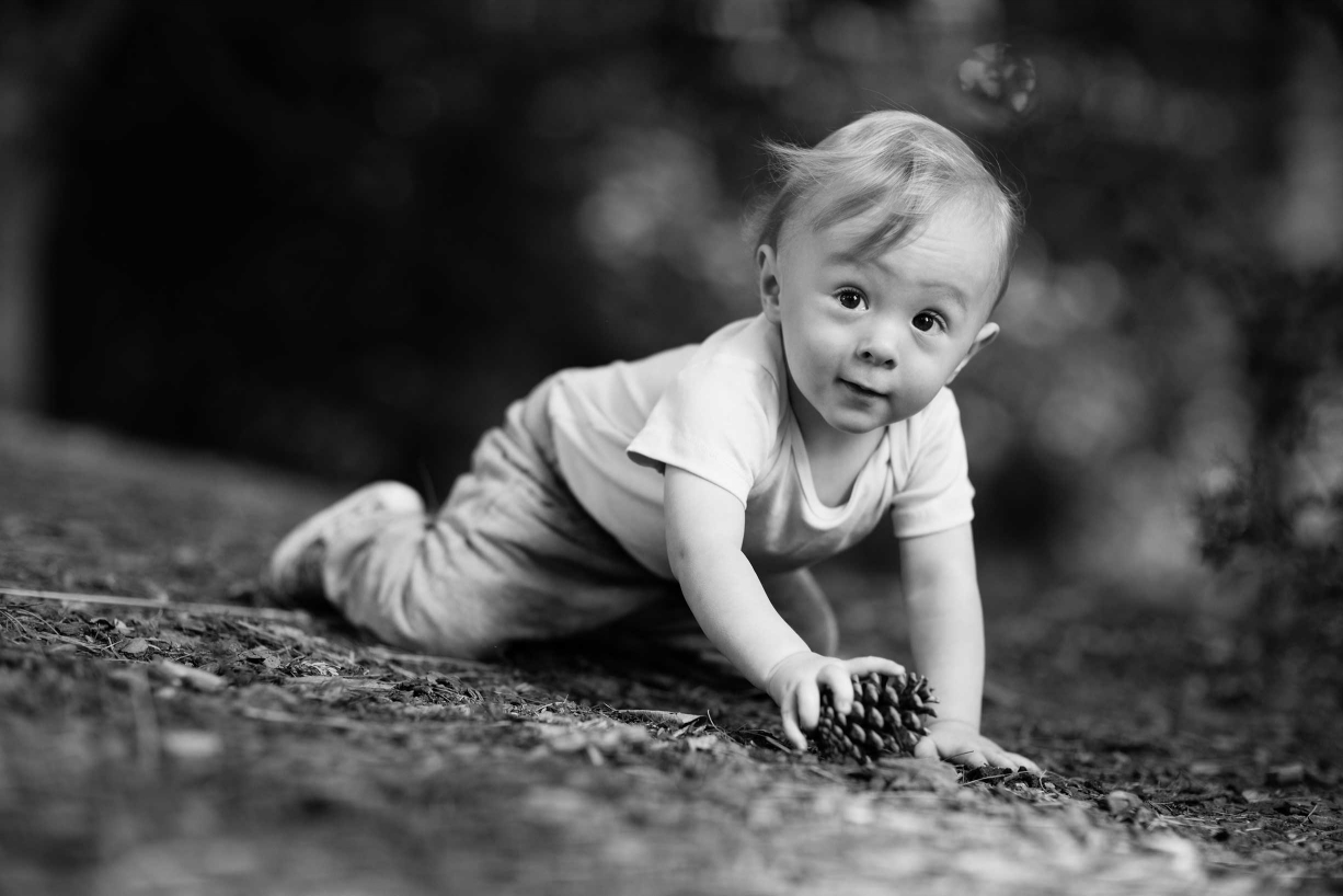 A happy child crawls through his family portraits.