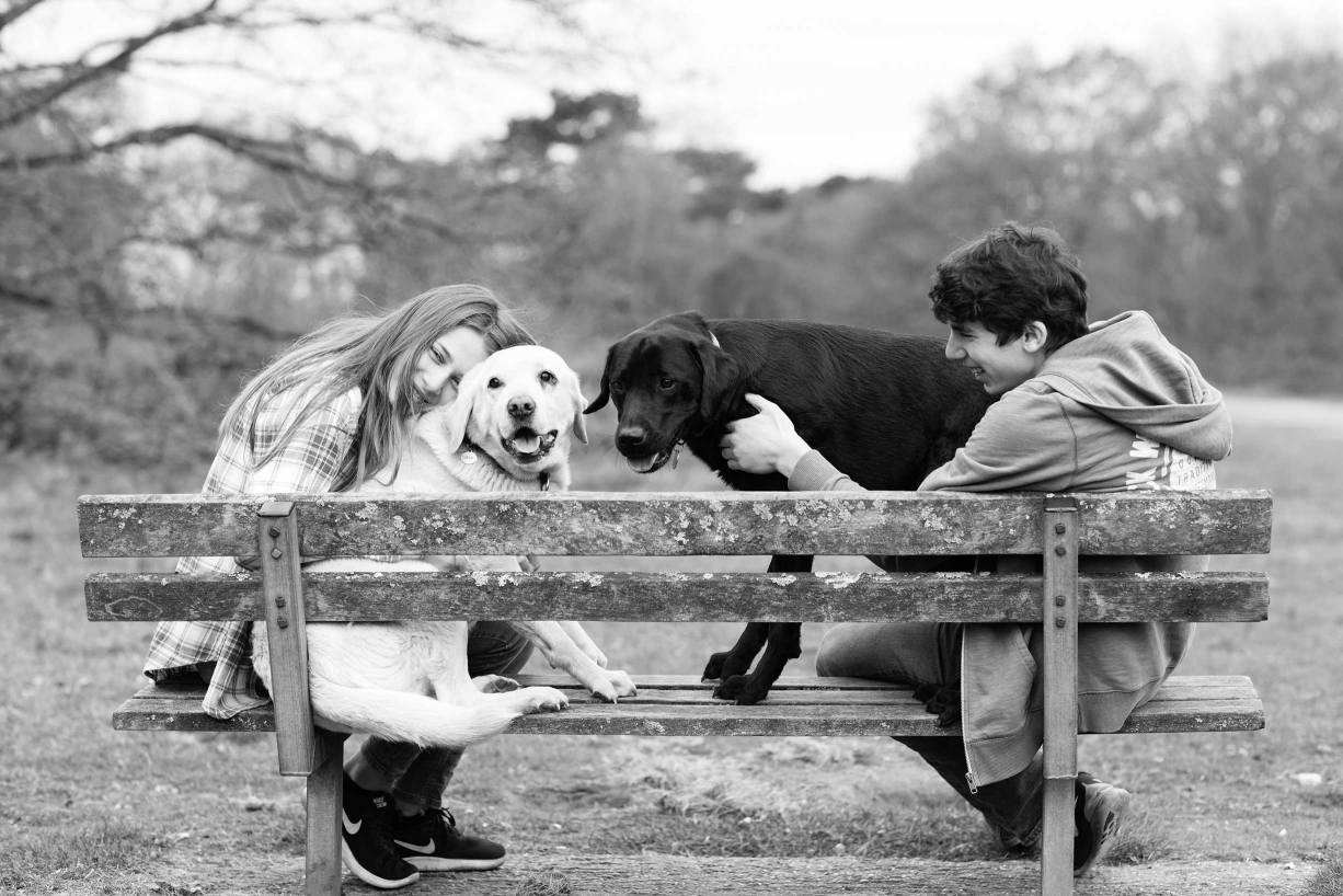 Puppies and a park bench in a portrait. Family photography at its finest!