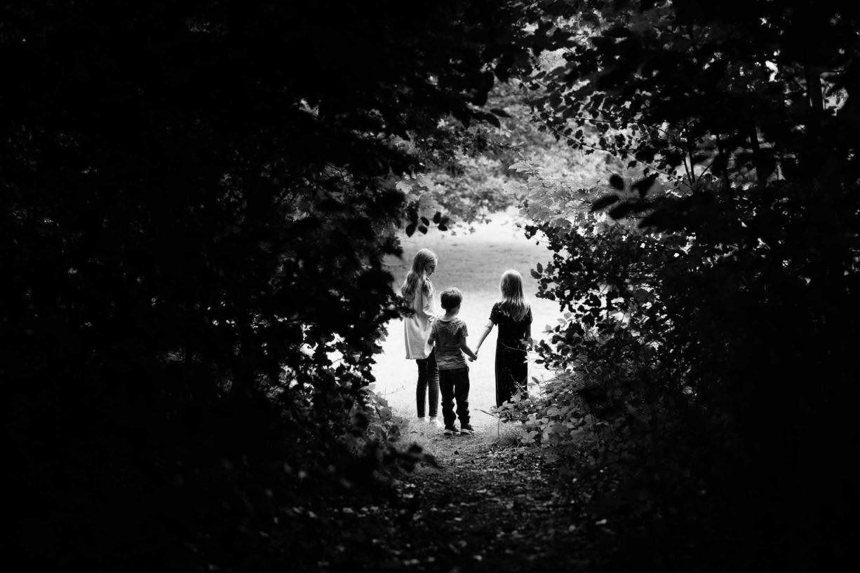 children-walk-through-woodland-path-into-light